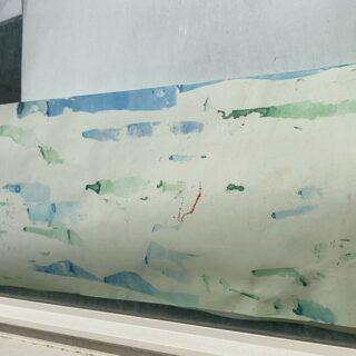 Visjes op het raam 🐠🐡🐟